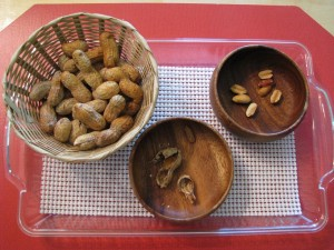 Shelling Peanuts (Caution: Allergies)